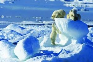 Crociera aurora boreale