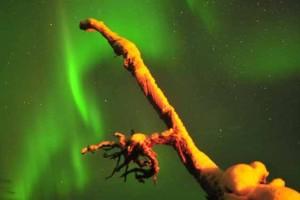 Osservare l'aurora boreale