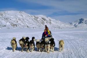 Safari con i cani da slitta alle Isole Svalbard