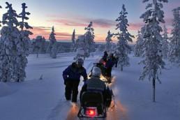 Safari in motoslitta in Lapponia