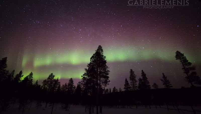 norden-light
