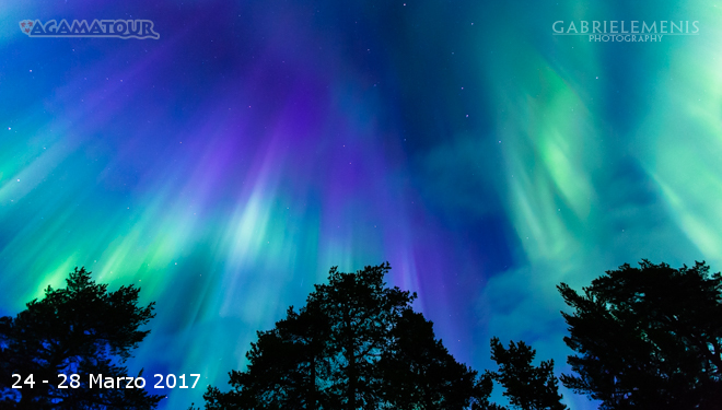aurora_polare
